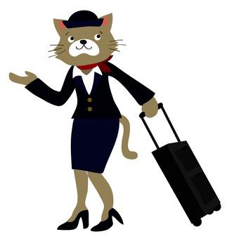 Cat's cabin attendant