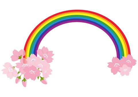 Sakura and rainbow