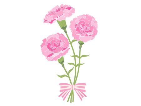 [어버이 날] 분홍색 카네이션