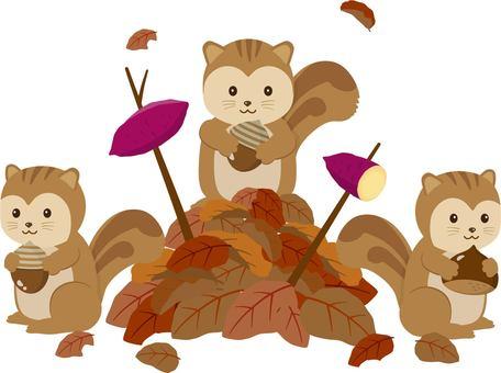 낙엽과 다람쥐 3 마리 군 고구마
