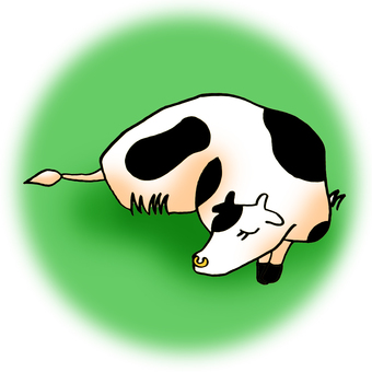 Cow lying on the grass