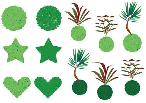 Moss ball set