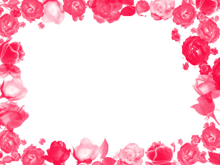 Frame薔薇red