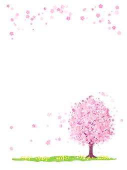 벚꽃 나무 (세로)