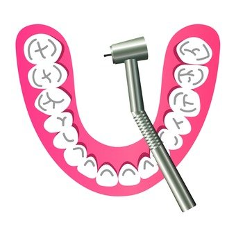 Dental model and dental turbine