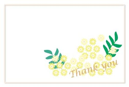 노란색 귀여운 꽃 미모사 아카시아 감사 카드