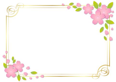 Cherry blossoms 315