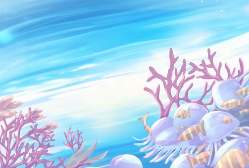 산호와 해파리의 바다