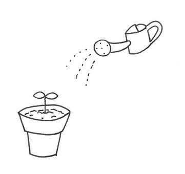 Water furigake