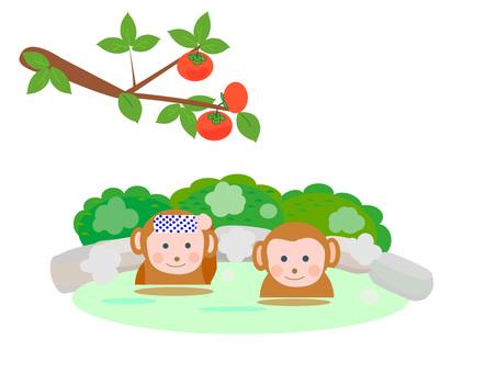 Open-air bath monkey