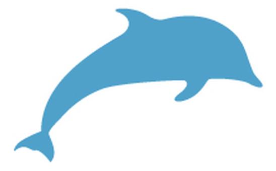 Dolphin-02