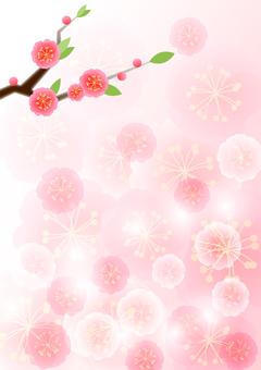 복숭아 꽃 배경