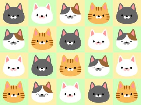 很多貓02