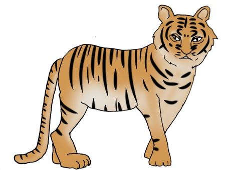 Right-facing tiger