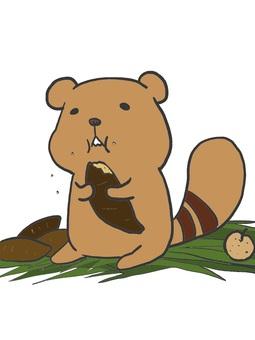 요코시마 다람쥐 (폭식)