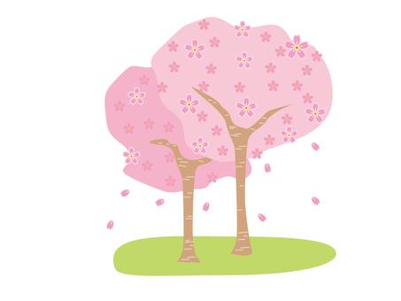 2 cherry blossom trees