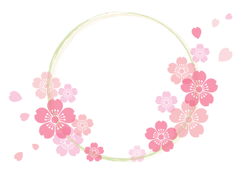 Cherry blossoms 206
