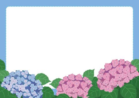 flower_ hydrangea's frame 2
