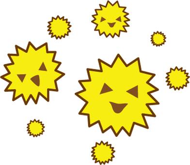 삼나무 꽃가루 (바이러스)