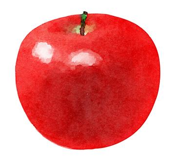 Watercolor ingredients series apples