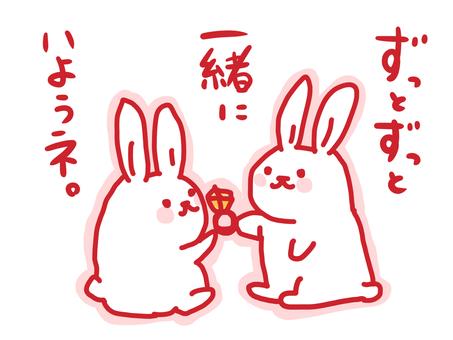 Rabbit proposal