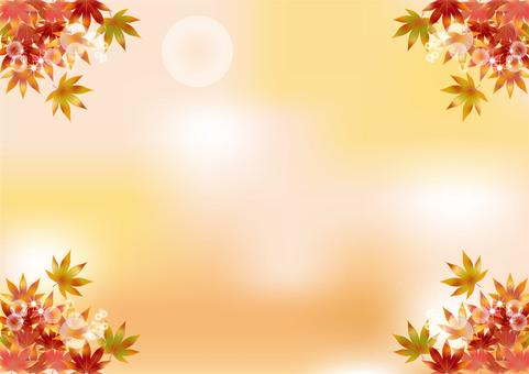 Autumn leaves 174