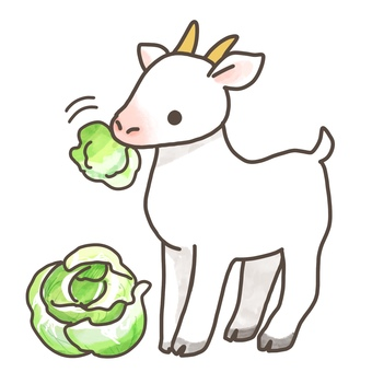 Goat eating vegetables