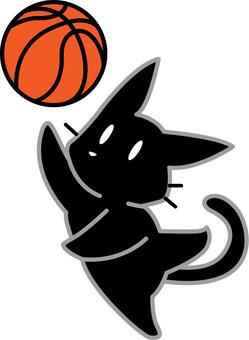 농구를하는 검은 고양이