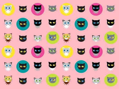 Cat · cat · cat 2