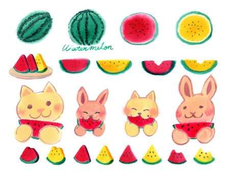 A lot of watermelons