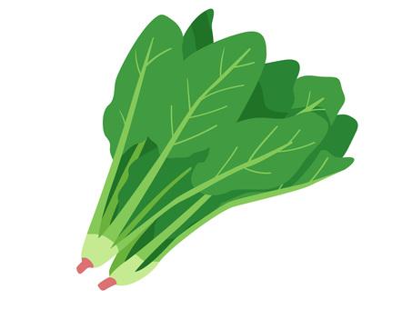 Ingredients_Vegetable_Spinach_No line