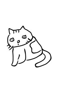 Cat catfish