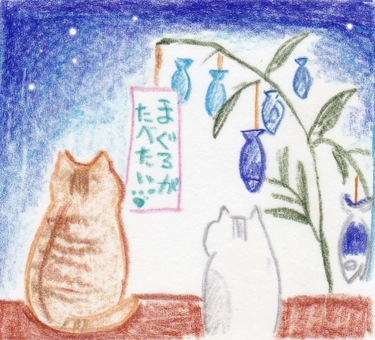 Cat Cat Tanabata