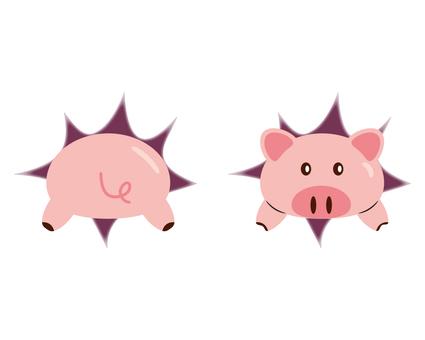 Diving pig (front & back)