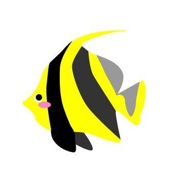黃色熱帶魚2
