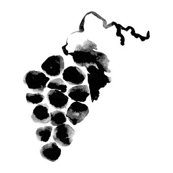 Ink painting, grape