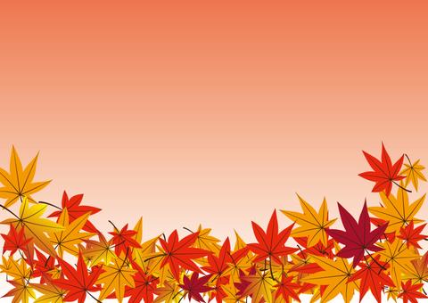 Fallen leaves back 01
