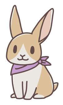 Scarf Rabbit 05
