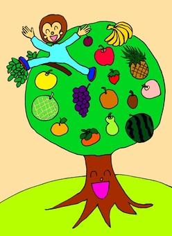Fruit of year