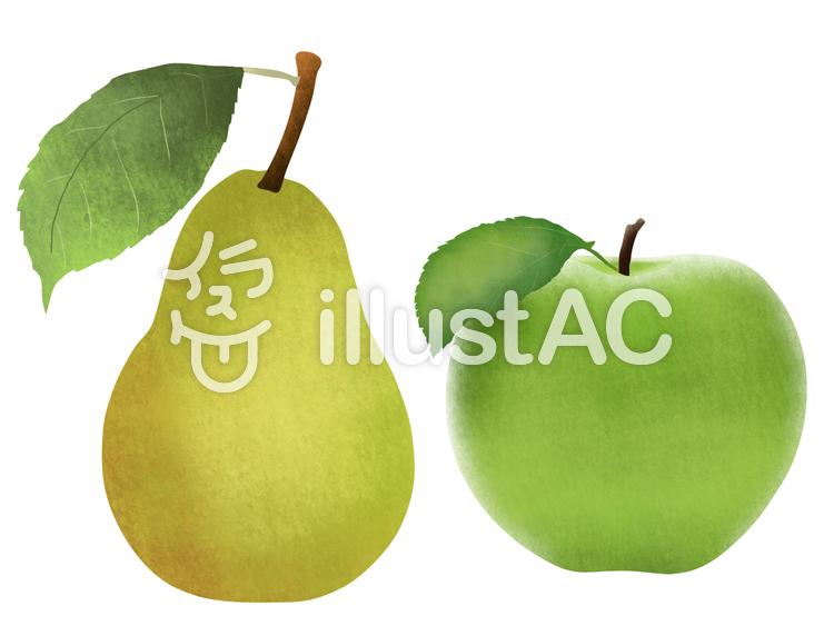 【フリーイラスト素材】洋ナシと青りんご