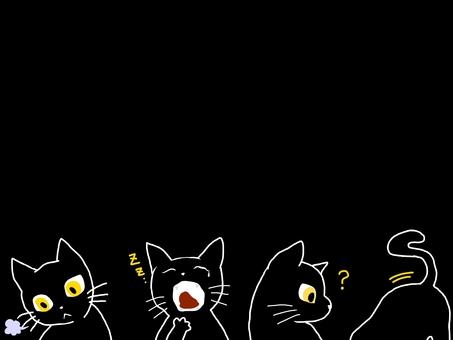 Black cat background black