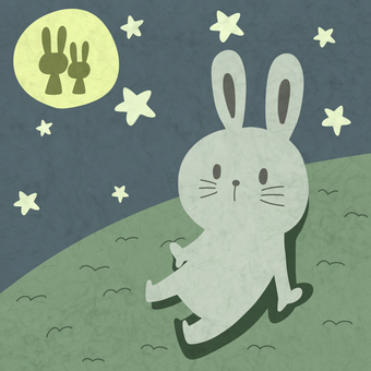 A rabbit watching the moon