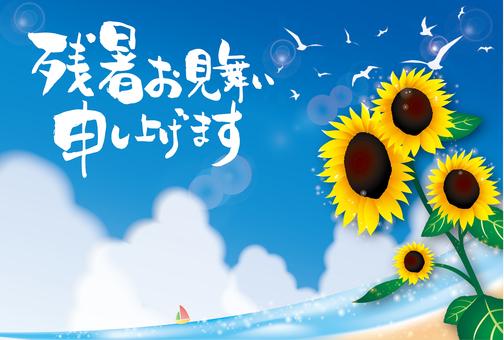 Long warming sympathy postcard Sunflower