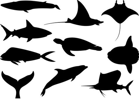 Marine life Sea creatures silhouette set