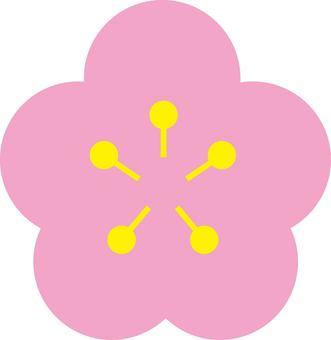 벚꽃의 꽃잎