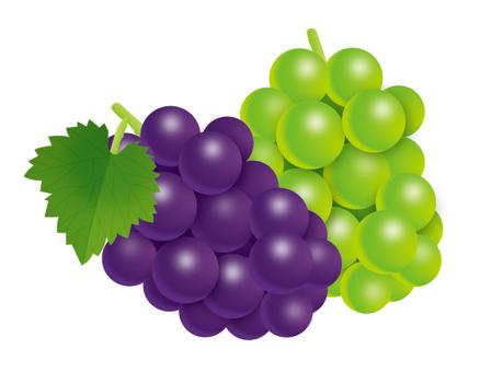 Grape Muscat