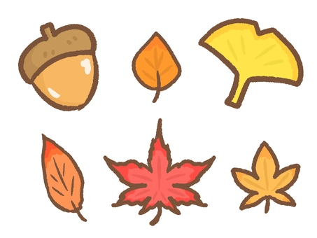 Autumn leaves and tree nuts set