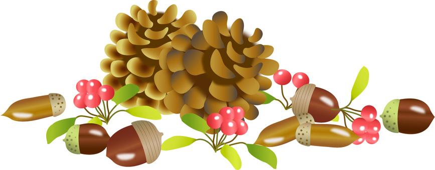 Tree nut 1