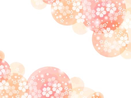 Sakura 91