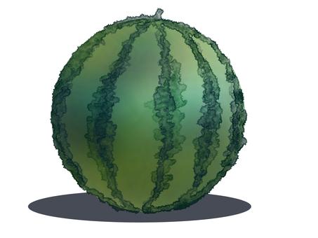 Watermelon with shadow